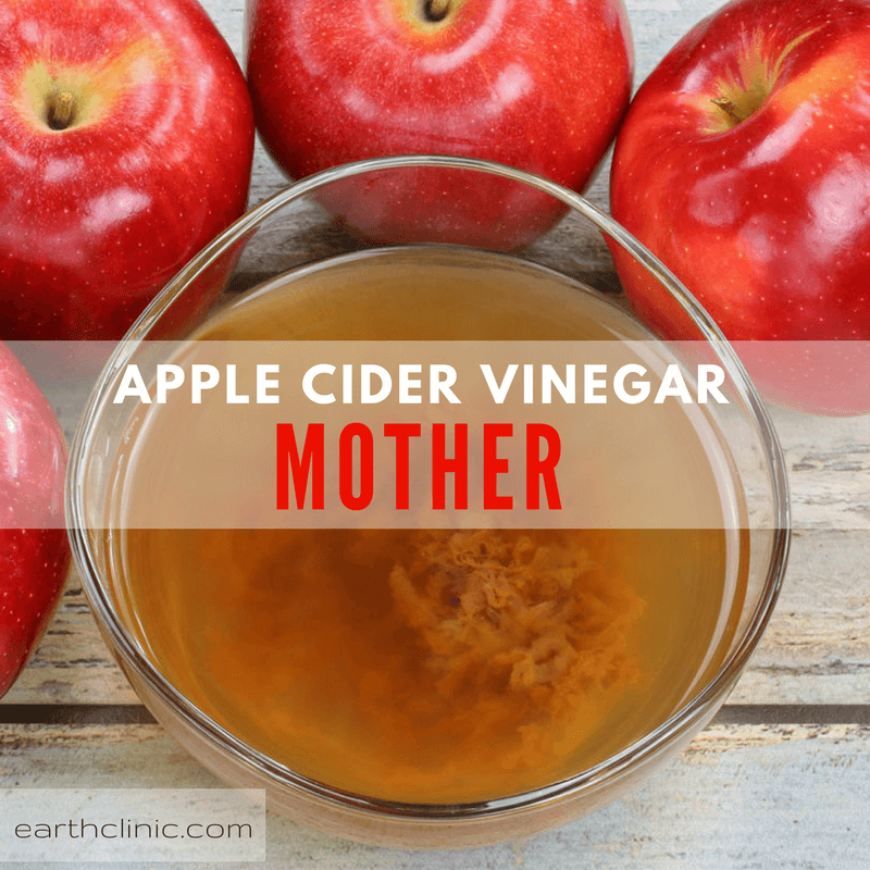 The Mother in Apple Cider Vinegar