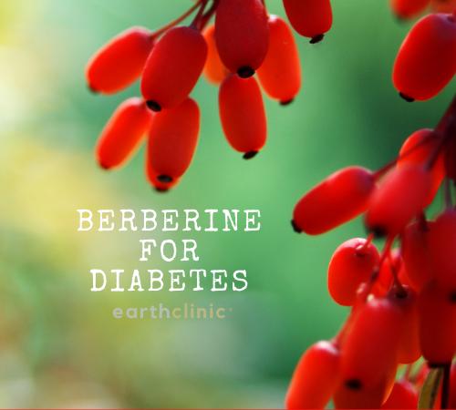 Beberine for Diabeters