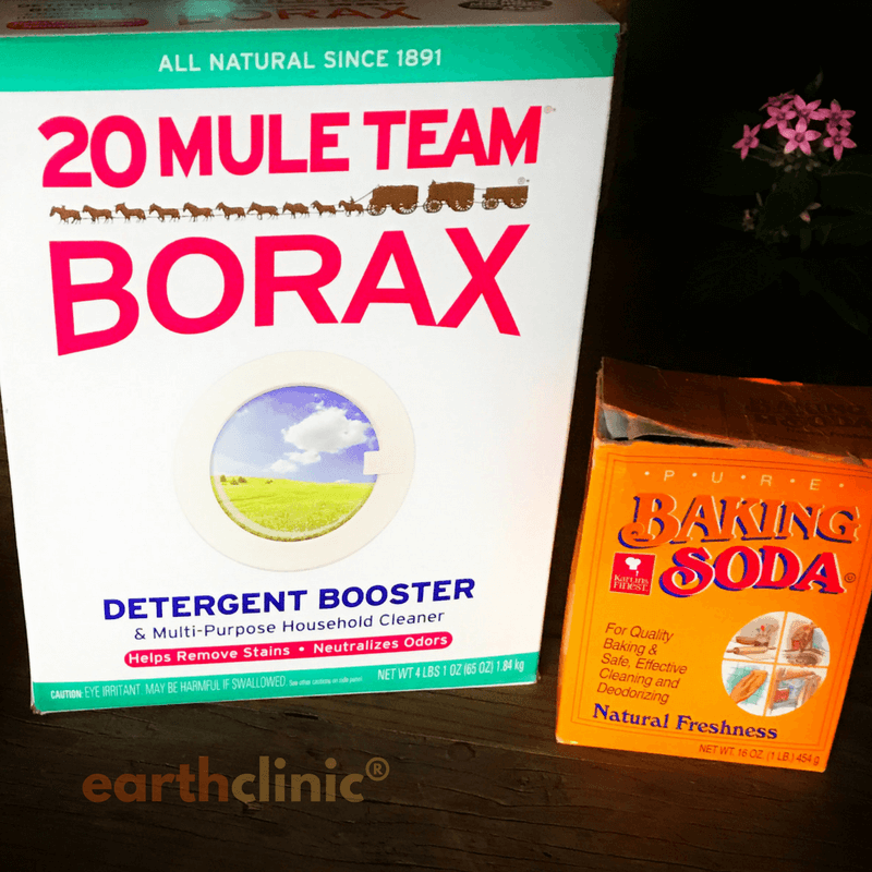 Borax and Sodium Bicarb Remedy