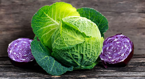 Cabbage Wrap for Swelling, Pain and Infection