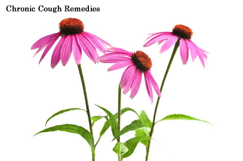 Chronic Cough Remedies