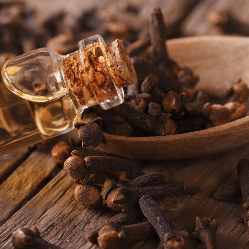 Clove Health Benefits