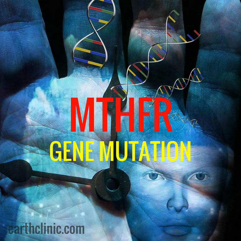 What is an MTHFR Mutation?