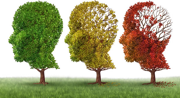 Natural Remedies for Alzheimer's and Dementia