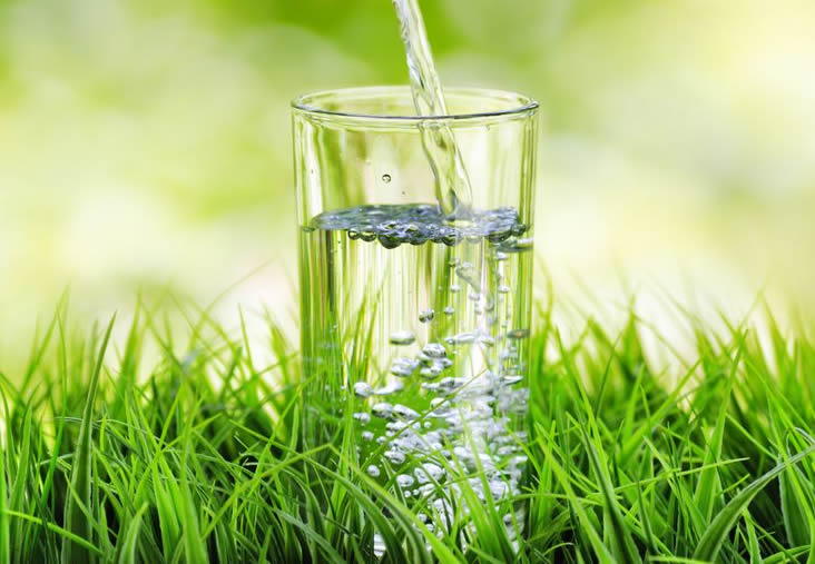 Water for Gout