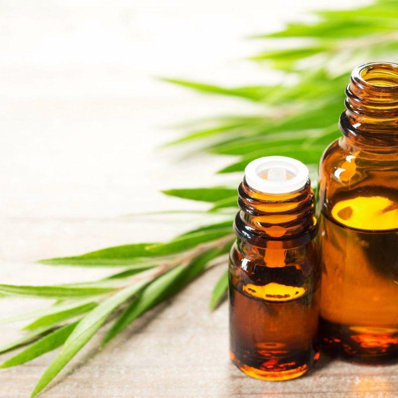 Tea Tree Oil for Nail Fungus - Earth Clinic®