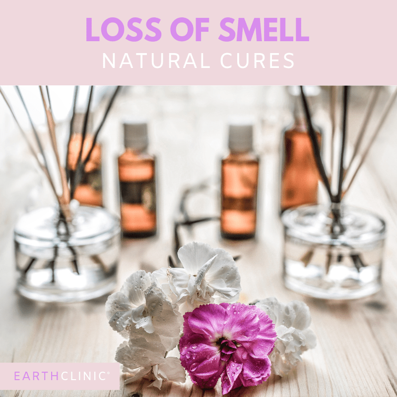 Top natural remedies for loss of smell.