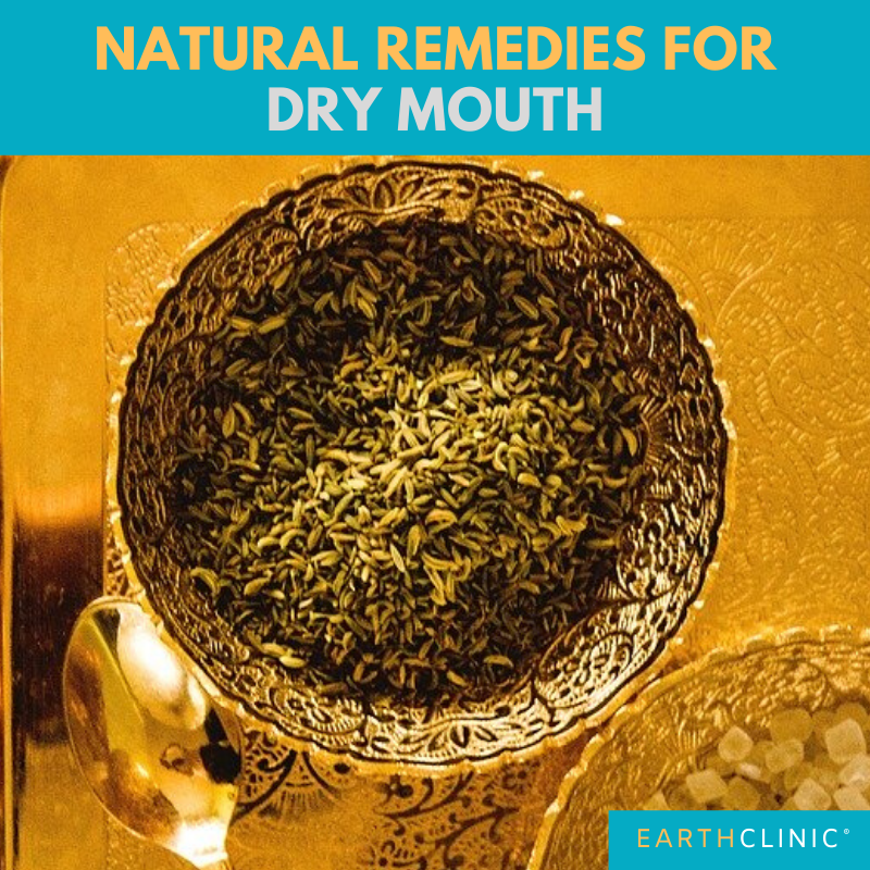 Fennel Seeds for Dry Mouth.