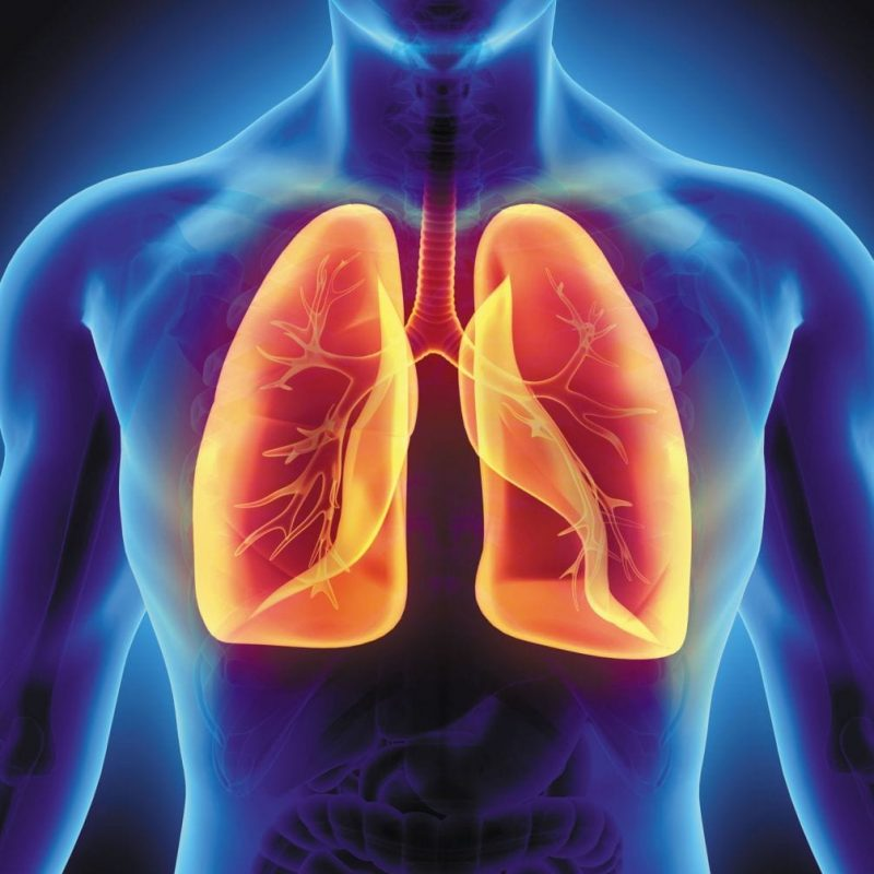 Natural Remedies for Lung Conditions