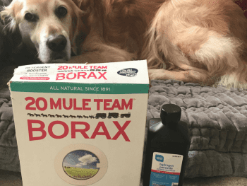 Borax for Mange Cure