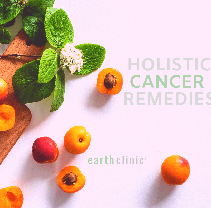 Natural Remedies for a Holistic Approach to Cancer - Earth Clinic®
