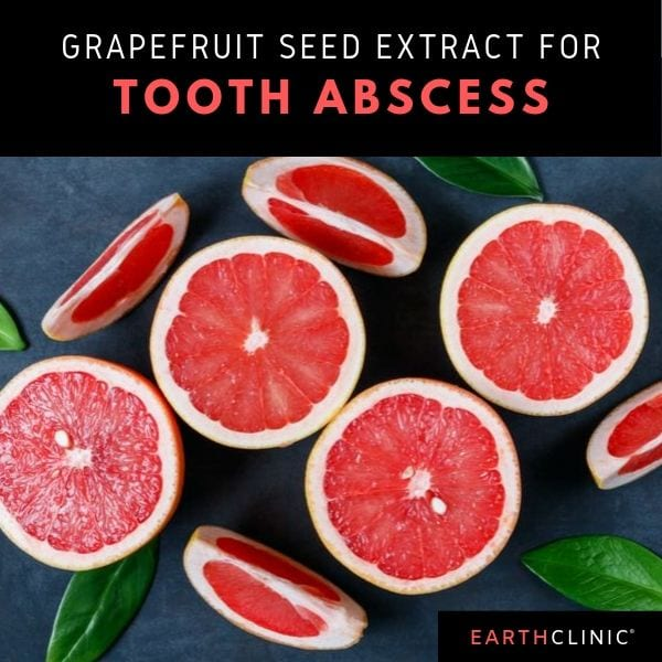Grapefruit seed extract for tooth abscess