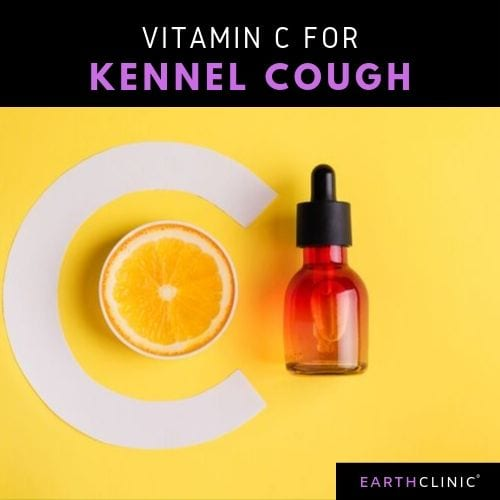 Vitamin C for Kennel Cough.